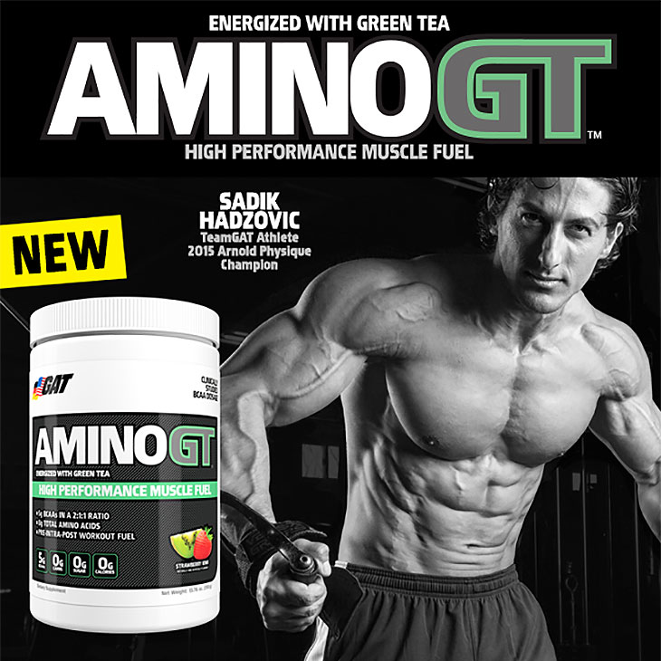 GAT Amino GT High Performance Muscle Fuel