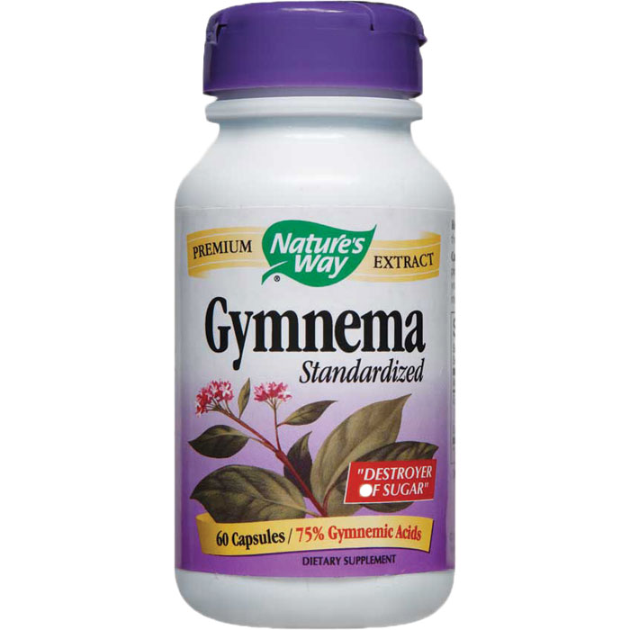 how to take gymnema sylvestre powder
