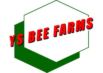 YS Organic Bee Farms