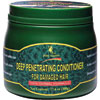 Deity America Deep Penetrating Conditioner for Damaged Hair 17.6 oz