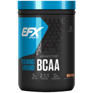 EFX Training Ground BCAA Strawberry Peach 500 gm - 71 Servings