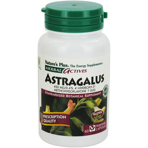 Herbal Actives Astragalus 450 mg 60 Vcaps